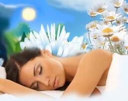 Комнатные цветы во сне
